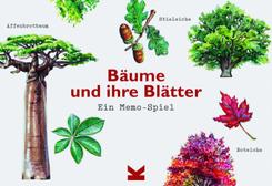 Bäume und ihre Blätter (Kinderspiele)