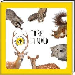 Mein erstes Soundbuch. Tiere im Wald - National Geographic Kids