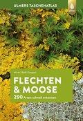 Flechten & Moose