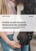 Pferde in der Erlebnispädagogik mit Kindern