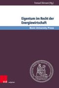 Eigentum im Recht der Energiewirtschaft