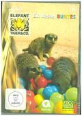 Elefant, Tiger & Co. - Ein Kessel Buntes, 2 DVDs