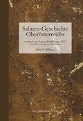 Salinen-Geschichte Oberösterreichs und benachbarte alpenländische Salinen - Bd.2