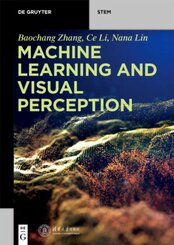 Machine Learning and Visual Perception