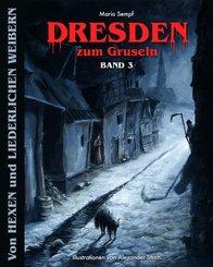 Dresden zum Gruseln - Bd.3