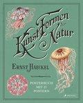 Ernst Haeckel: Kunstformen der Natur