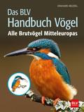 Das BLV Handbuch Vögel