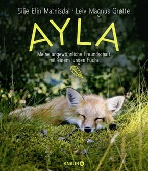 Ayla - meine ungewöhnliche Freundschaft mit einem jungen Fuchs