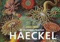 Ernst Haeckel Postkartenbuch