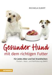 Gesunder Hund mit dem richtigen Futter