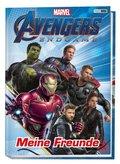 Marvel Avengers Endgame: Meine Freunde