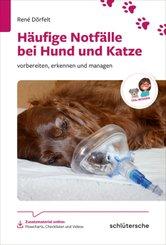 Häufige Notfälle bei Hund und Katze