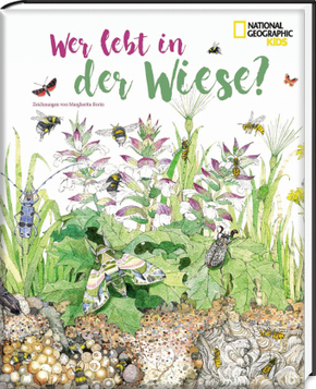Wer lebt in der Wiese? - National Geographic Kids