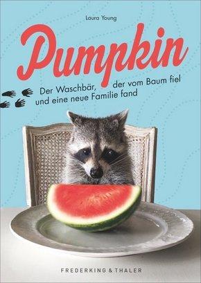 Pumpkin - Der Waschbär, der vom Baum fiel und eine neue Familie fand