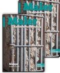 Maler-Taschenbuch 2019, 2 Bde. - Bd.1+2