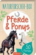 Naturforscher-Box - Pferde & Ponys, 50 Karten