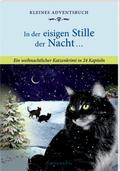 Kleines Adventsbuch - In der eisigen Stille der Nacht ...