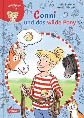 Conni und das wilde Pony