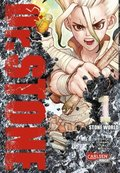 Dr. Stone - Stone World