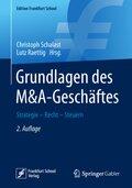 Grundlagen des M&A-Geschäftes