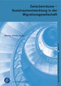 Zwischenräume - Sozialraumentwicklung und Sozialraumorganisation in der Einwanderungsgesellschaft