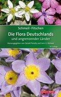 Schmeil-Fitschen - Die Flora Deutschlands und angrenzender Länder