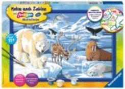 Malen nach Zahlen - Jeder kann malen (Mal-Sets), Bildgröße: 31 x 21 cm: Tiere der Arktis