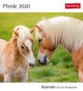Pferde 2020 - Kalender, Tischkalender