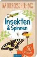 Naturforscher-Box -  Insekten & Spinnen
