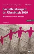 Sozialleistungen im Überblick 2019, m. 1 E-Book