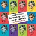 Der Ludwig - jetzt mal so gesehen - Beethoven im Alltag, 2 Audio-CDs