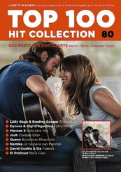 Top 100 Hit Collection - Nr.80