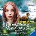 Pferdeflüsterer-Academy -  Zerbrechliche Träume, 2 Audio-CDs