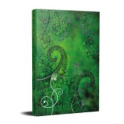 Das Schwarze Auge, Notizbuch der Elfen