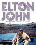Elton John, Das Porträt