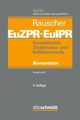 Europäisches Zivilprozess- und Kollisionsrecht EuZPR/EuIPR, Band I