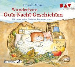 Wunderbare Gute-Nacht-Geschichten, 1 Audio-CD