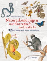 Naturerkundungen mit Skizzenheft und Staffelei