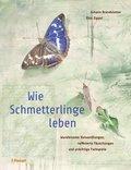 Wie Schmetterlinge leben
