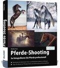 Pferde-Shooting
