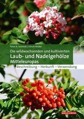Die wildwachsenden und kultivierten Laub- und Nadelgehölze Mitteleuropas