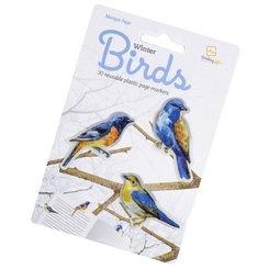 Stikki Marks Winter Birds - 30 Mini-Lesezeichen