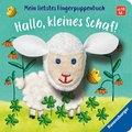 Hallo, kleines Schaf!
