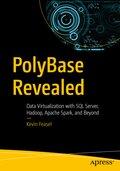 PolyBase Revealed