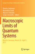 Macroscopic Limits of Quantum Systems