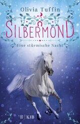 Silbermond: Eine stürmische Nacht