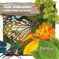 Kleine Waldbewohner: Insekten, Würmer und Schnecken