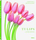 Tulips, small edition