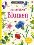 Naturführer: Blumen