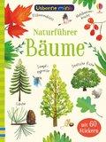 Naturführer: Bäume